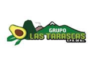 01-grupo-los-tarascos