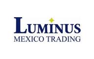 13-luminus